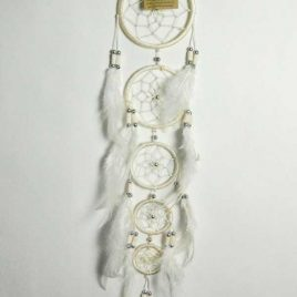 Dream Catcher Natural with 5 Circles
