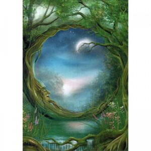 Greeting Greeting Gift Card Tree Free Day And Night