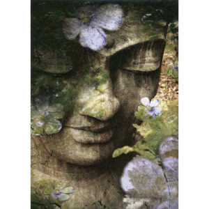 Tree Free Greeting Gift Cards Inner Tranquility