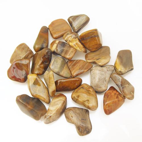 Crystal Tumblestone Petrified Wood